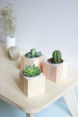 Cube bois & plantes grasses de l'atelier Lilas Wood fleuriste mariage à lyon en Rhône alpes